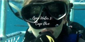 Open Water 3: Cage Dive (Film)Review